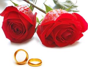 Künstler für Hochzeit gesucht